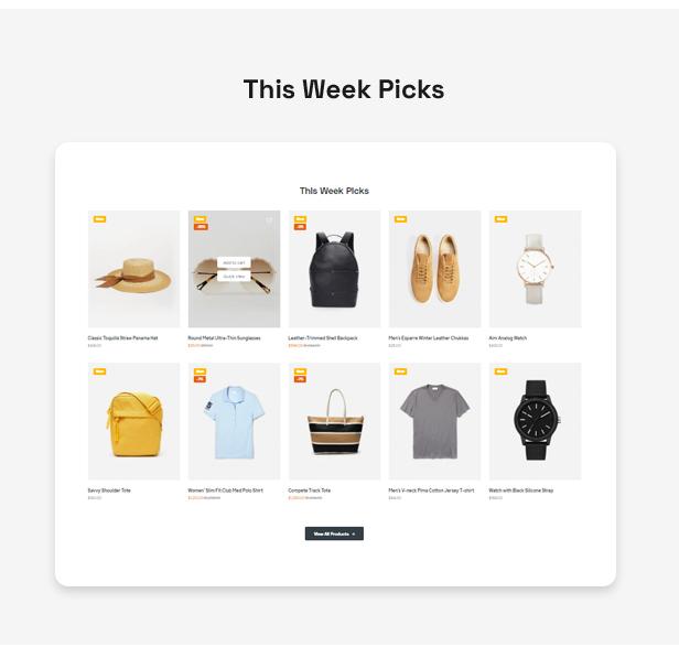 Flexon - Mehrzweck-WordPress-Theme - 11