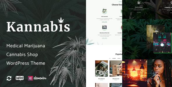 Wordpress Immobilien Template Kannabis - Medical Marijuana & Cannabis WordPress Theme