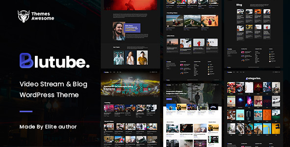 Wordpress Entertainment Template Blutube   Video Stream & Blog WordPress Theme