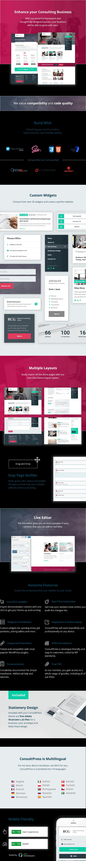 ConsultPress - WordPress Theme für Beratungs- und Finanzunternehmen - 1